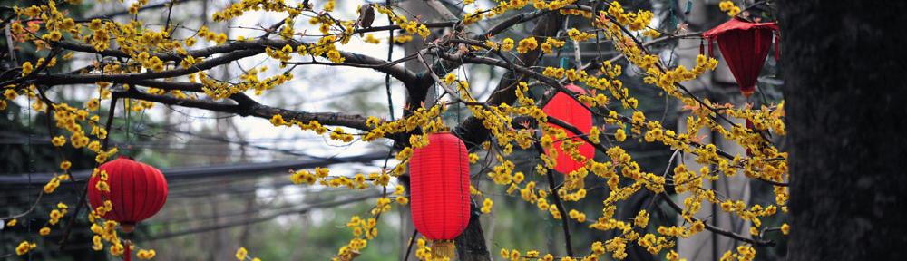 Blog @ Changchun China